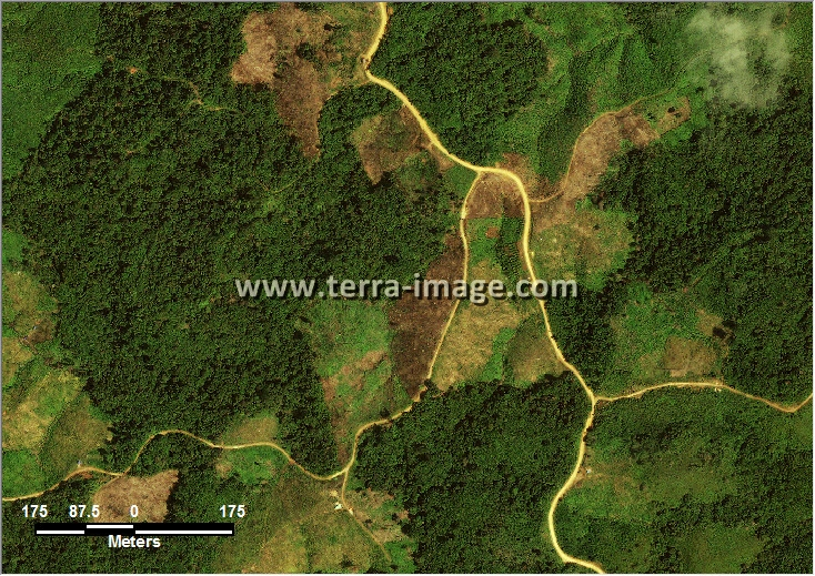 citra satelit worldview-2 natural color kutai timur