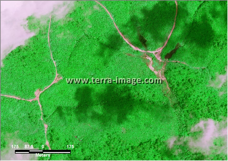 citra satelit worldview-2 green color kutai timur