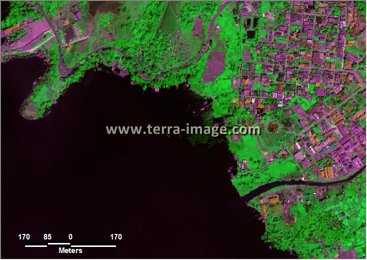 citra satelit worldview-2 green color jayapura papua