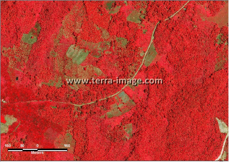 citra satelit worldview-2 red loan janan kutai