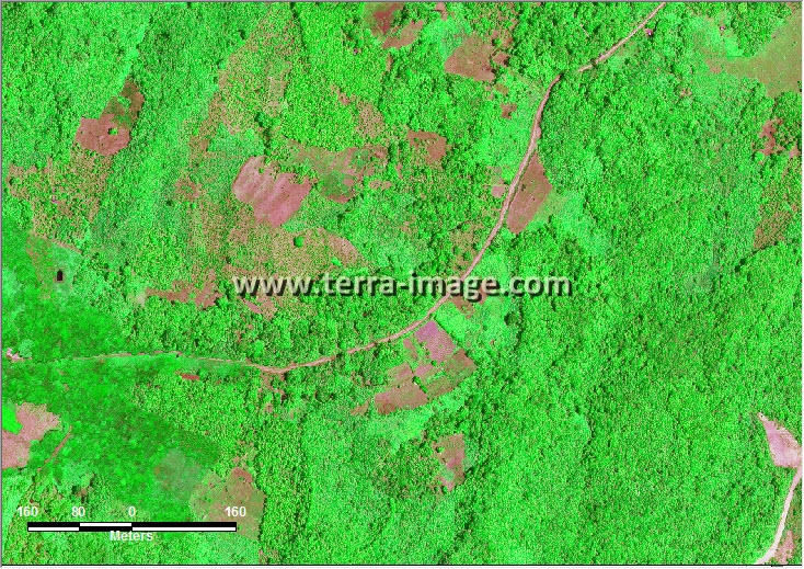 citra satelit worldview-2 green loan janan kutai