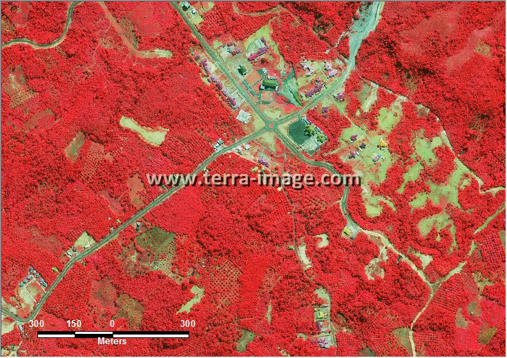 citra satelit worldview-2 red color bintuhan bengkulu
