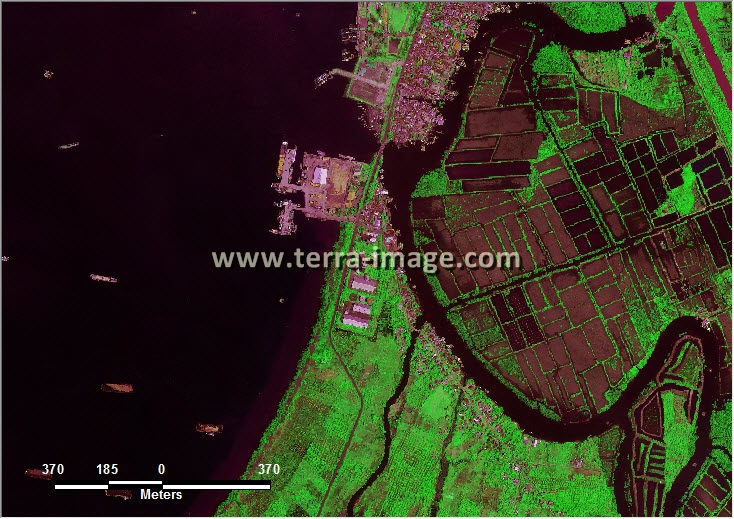 citra satelit worldview-2 green color kota bengkulu
