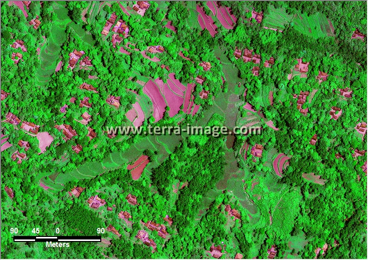 citra satelit worldview-2 green color bangkalan madura