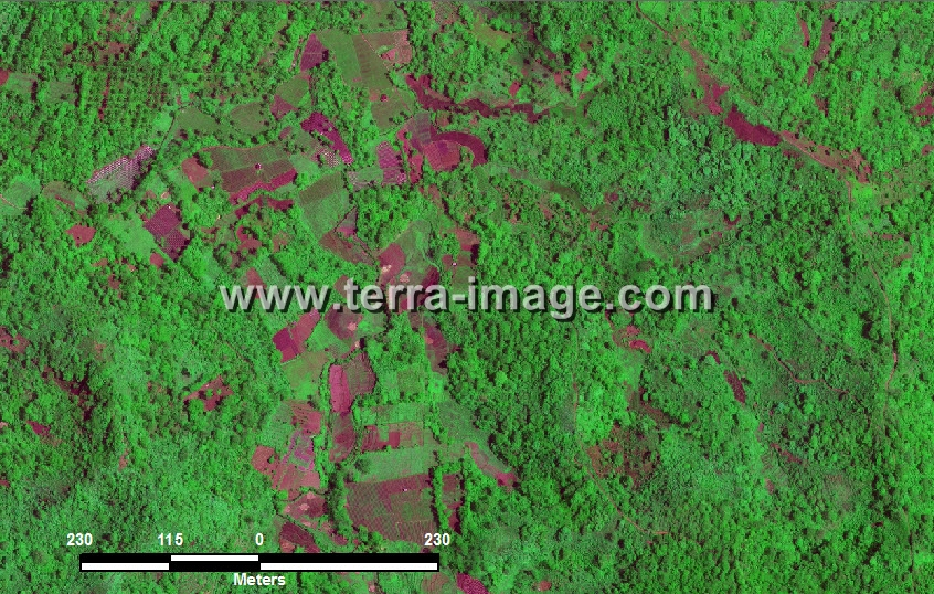 citra satelit worldview-2 green color tanggamus lampung