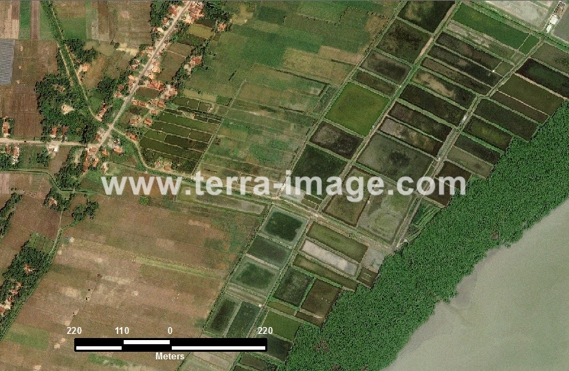 11 Labuhan Maringgai Natural citra satelit