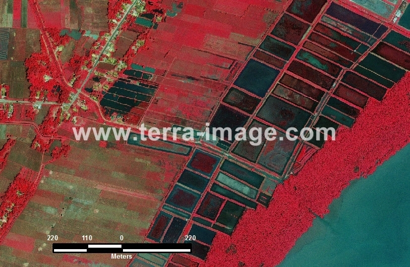 11 Labuhan Maringgai Red citra satelit