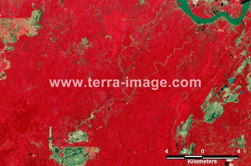 23 Kutai Landsat Red Citra Satelit