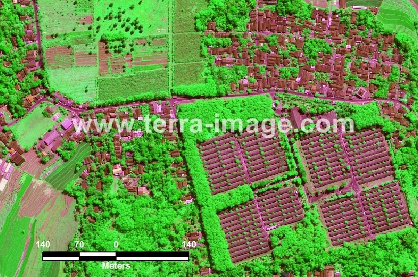 36 Limbangan WorldView-2 Green Citra Satelit