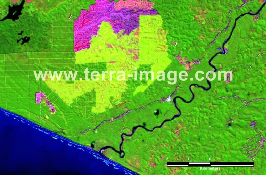 38 Bengkulu Utara Landsat Green color Citra Satelit