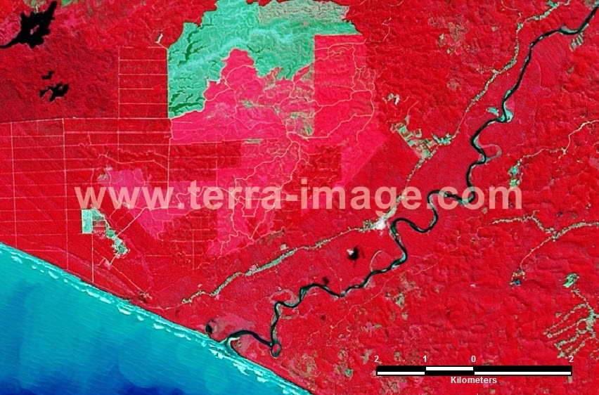 38 Bengkulu Utara Landsat Red color Citra Satelit