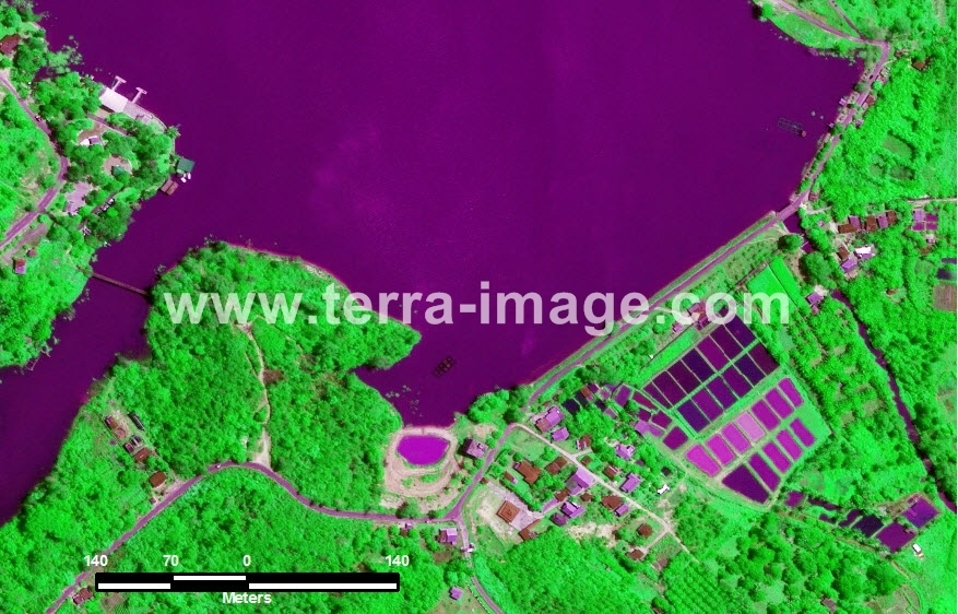 41 Pekanbaru WorldView2 Green Color Citra Satelit
