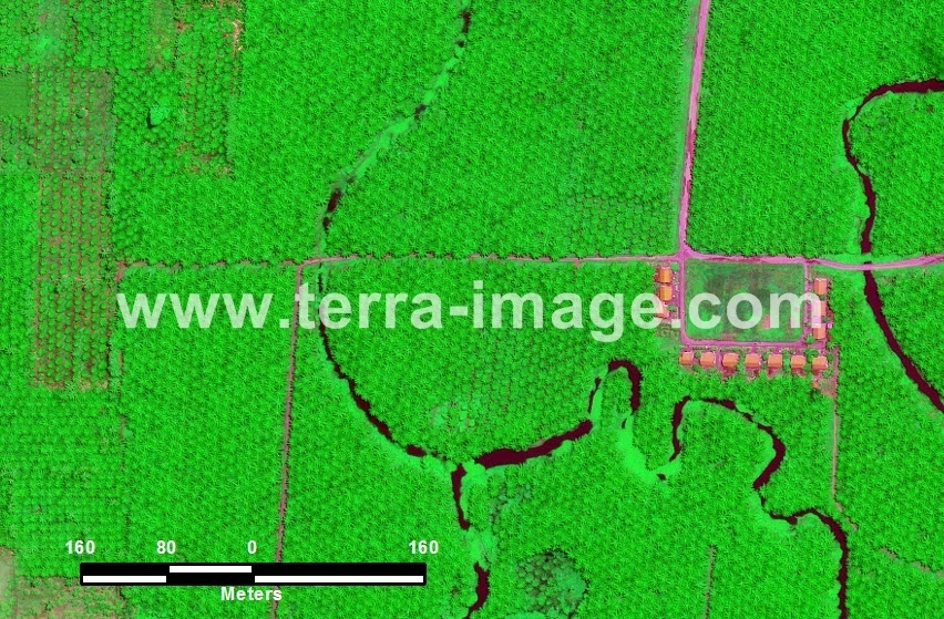 49 Tobadak GeoEye Green color Foto Satelit
