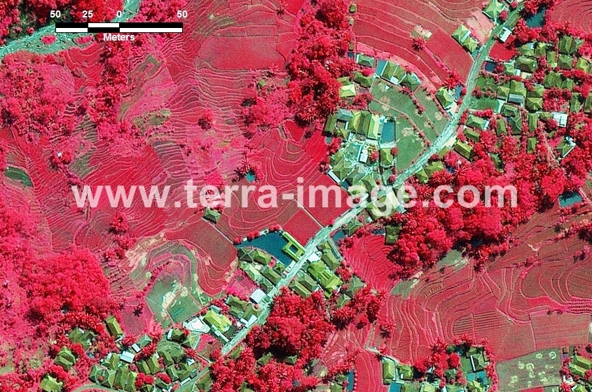 50 Cisokan WorldView2 Red Foto Satelit