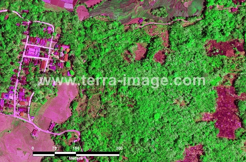 60 Maros WorldView-2 Green Color Foto citra satelit