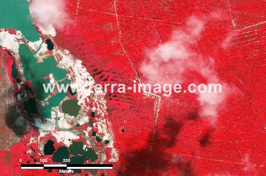 62 Bangka Tengah WorldView-2 Red Color Foto citra satelit