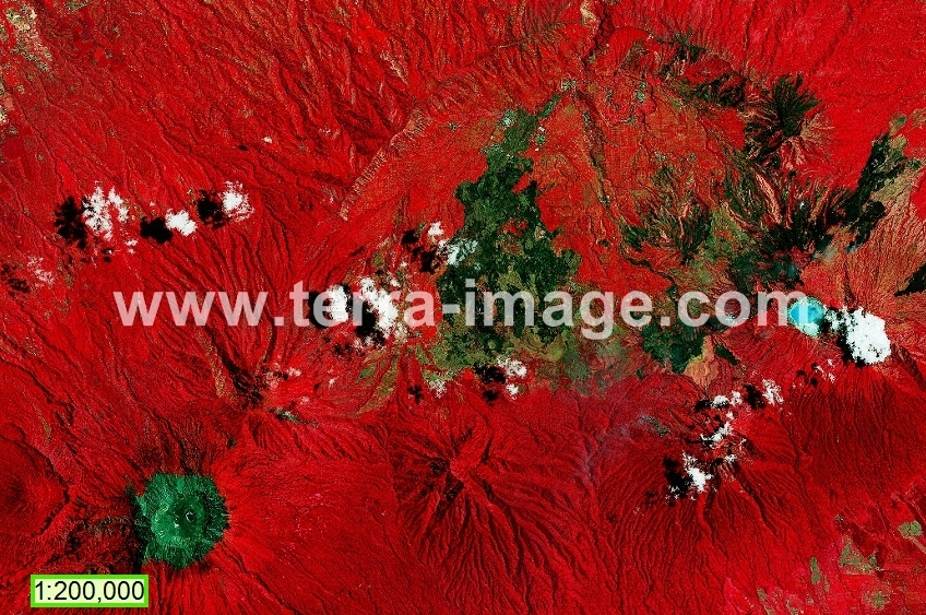 08 Landsat 8 red Jatim foto satelit