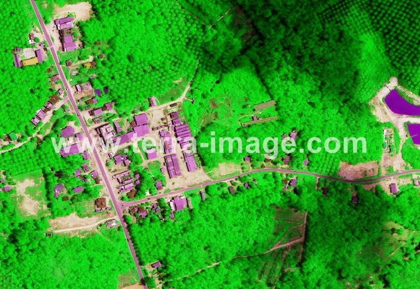 16 WorldView-2 Green Pelelawan foto satelit