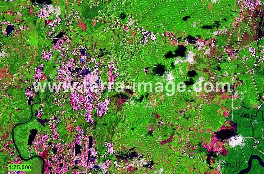 10 Landsat8 Green Kutai citra satelit
