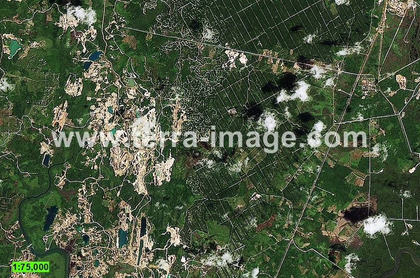 10 Landsat8 Natural Kutai citra satelit