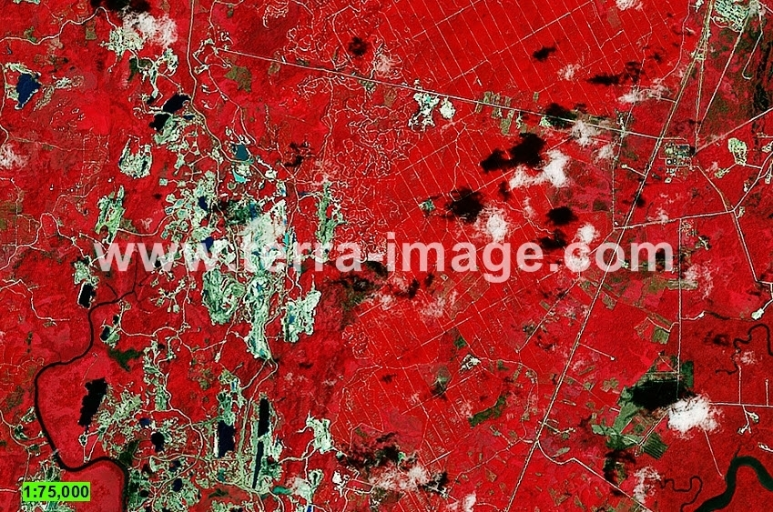 10 Landsat8 Red Kutai citra satelit