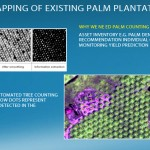 Palm Counting